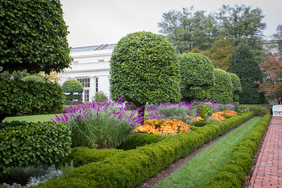 The Jacqueline Kennedy Garden at the White House - October 2012