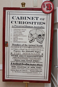 The Cabinet of Curiosities.
