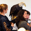 "Amy Desautels-Stein, bottom right, and her son, Dakota, 5, pose for a photo with a bald eagle, held by Lori Turney of Hawk Quest of Colorado.<br /> The Wild Bear Mountain Ecology Center in Nederland celebrated Earth Day with live animals, activities, speakers, among other things on Sunday. For a video and more photos of Wild Bear, got to  <a href=""http://www.dailycamera.com"">http://www.dailycamera.com</a>.<br /> Cliff Grassmick / April 22, 2012"