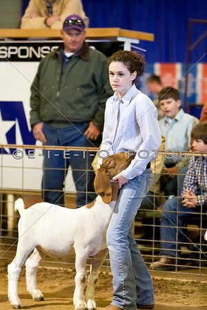 Goat Show Dec. 4th 2008  Williamson County Livestock Show
