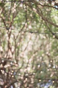 spring2015_010