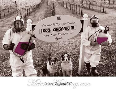 2001 Organic