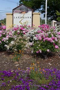 Landmark-2015-2