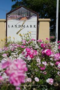 Landmark-2015-4