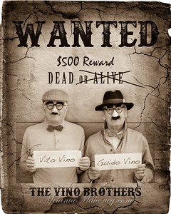 Wanted Poster-2