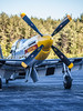 "The P-51D Mustang, ""Never Miss"".  Murphy Family Flying.  Wiscasset, Maine.   0985"