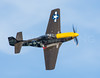 "The P-51D Mustang, ""Never Miss"".  Murphy Family Flying.  Wiscasset, Maine.   0315"