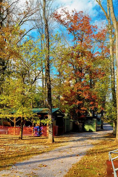 Winnewald Day Camp in Fall