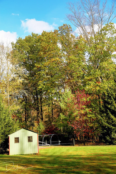 Winnewald Day Camp in Fall