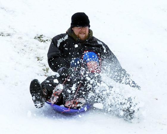 0201 sled family