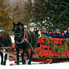 Inagural Winter WonderFest at GT Resort & Spa