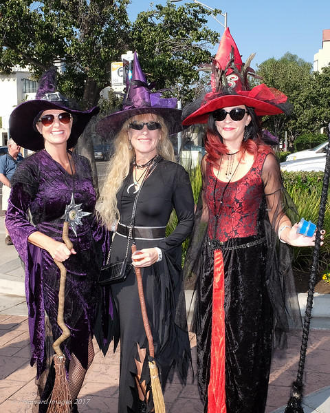 Witches Tea Oct 2017 lo res-8902