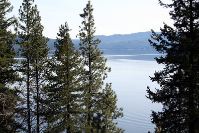We took a walk and then stopped at a bench to reast. Here is the view of Lake Coeur d' Alene from Lutherhaven.