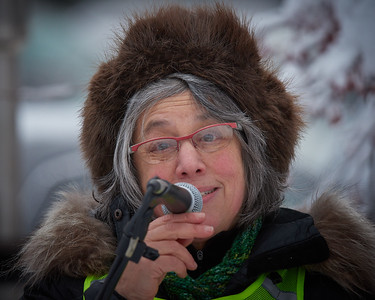 Nikki Eiseman  addresses the roughly 400-strong crowd at the Women's March held in Fairbanks Alaska on January 20, 2018. Ms. Eiseman urged support for Alyse Galvin, an education advocate running for the Federal House of Representatives seat that has been held since 1973 by Republican Don Young - second longest serving member of the House.