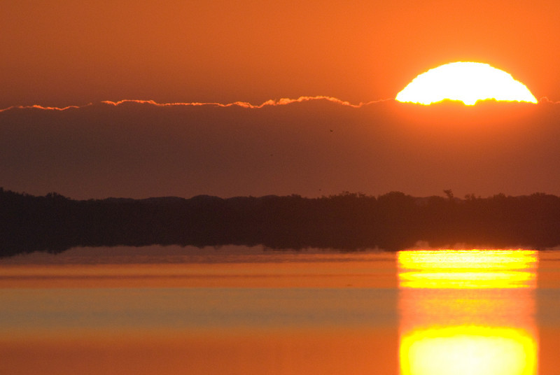 Photos From the Milton Hieberg Field-trip at The 2009 Space Coast Birding & Wildlife Festival - Sunrise