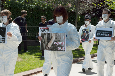 ARP_042511_1025w  Animal rights protestors in costumes and masks arrying anti vivisection signs protest animal testing in laboratories during World Week for Animals in Laboratories at UCLA in Los Angeles, CA 04/25/2011.  All Rights Reserved. No usage of any kind without written permission and compensation to www.lauriepaladinophotography.com