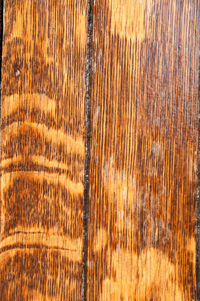 Wood Grain Abstract