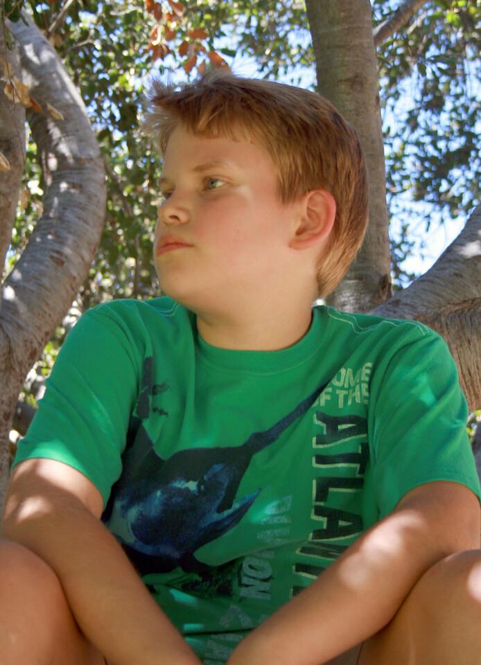 Devan in the oak tree 2