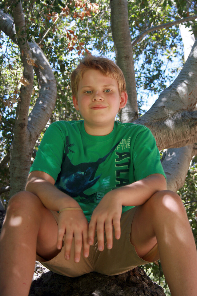 Devan in the oak tree 3