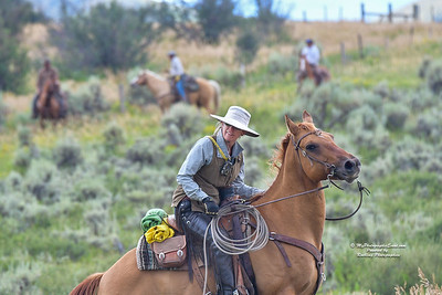 Wyoming Roundup-20
