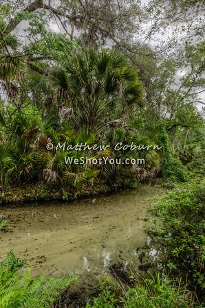 Juniper Springs Ocala National Forest Silver Springs, FL