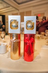YBM Leadership Alliance Evening of Excellence Gala @ Ballantyne Resort 11-10-17 by Jon Strayhorn