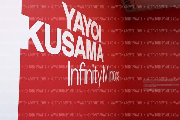 Yayoi Kusama nfinity Mirrors VIP Opening and Dinner