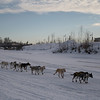 Credit: Chris Harper/FCVB<br /> <br /> A musher heads for the finish line on the Chena River in downtown Fairbanks during the 2009 Yukon Quest International Sled Dog Race.