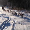 Credit: Susan Keltner/FCVB<br /> <br /> A musher and team of dogs on the trail during the 2008 Yukon Quest International Sled Dog Race.