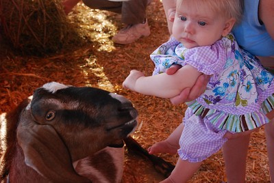 """Goats?  Really mom and dad?  Can't you do any better?"""