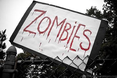 ZombieWalk_2012_002