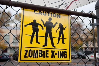 ZombieWalk_2012_008