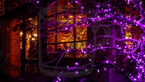 Gift Shop w surrounding lights, v2