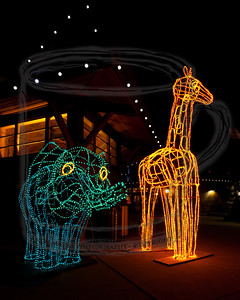 The blue elephant with yellow eyes and orange giraffe with yellow eyes bid visitors good-evening as they exit the zoo for its 9pm close.