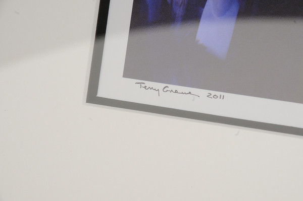 Terry Greene - ARTvision 2011