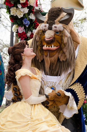 Festival of Fantasy- Beast and Belle