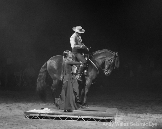 Spirit of the Horse show 2018