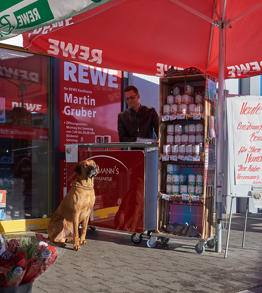 Herrmanns Manufaktur - Hundefutter @ REWE Assling