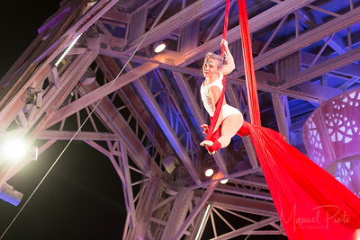 Pavilion Aerialist Show with Lepidoptera - P Canadensis