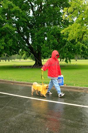 2011 SSPCA Doggy Dash