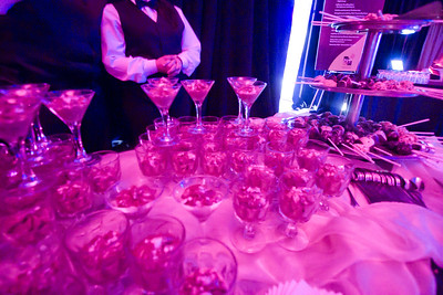 Unofficial Photos ISES Awards Gala