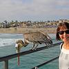 2014-06-10_Kathy Murray_Pelican HB Pier_0358.JPG