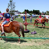 8013 Perennial favorite - pony rides