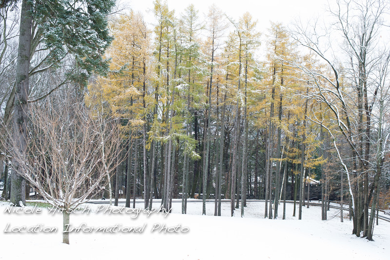 WinterLocationsA_05