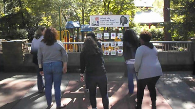 Amerigroup: Zoo Atlanta teamwork hunt