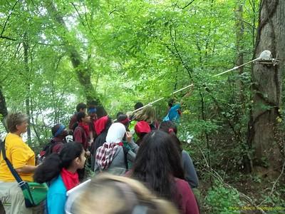 Amana Academy: Expedition
