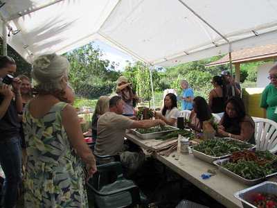 Another view of lei-makers (Photo by Irene Newhouse)