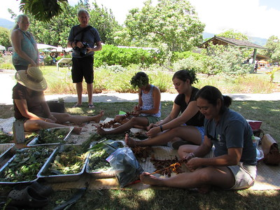 Making lei with malo 'ulu and ti with malo 'ulu (photo by Irene Newhouse)