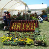 The farmers' market booth had this great sign made from potted plants
