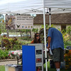 Maui Foest Bird Recovery Project had a booth